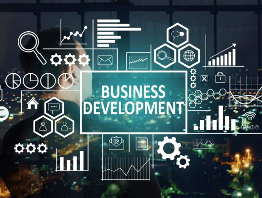 פיתוח עסקי אצל יועץ עסקי